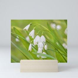 Snowdrops Mini Art Print