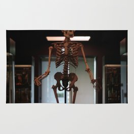 Human Skeleton at Museum Vrolik Rug