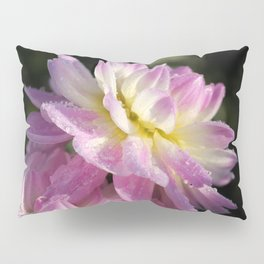 Frosted Dahlia named Sandia Melody Pillow Sham