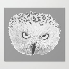 Snowy Owl Grey Canvas Print