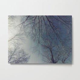 The Trees - Moody & Blue Metal Print