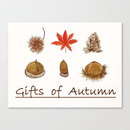 Gift of autumn watercolor painting Canvas Print