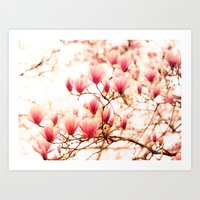 cherry blossoms Art Prints featuring Cherry Blossoms by Vivienne Gucwa