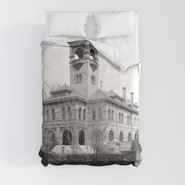 St. Ursula Hall, Ursuline Convent, New Orleans 1900 Comforters