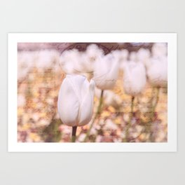 Subtle Pink Tulip Love Letter Art Print