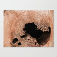 tree rings Canvas Prints featuring Rings  by Jlynn photo