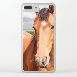 Bay Mare Clear iPhone Case