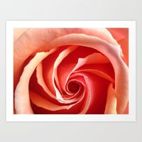 aperture Art Prints featuring Rose Aperture by Lita Mikrut