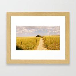 Follow me to Paradise Framed Art Print