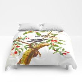 Downy Woodpecker John James Audubon Birds of America Scientific Illustration Comforters