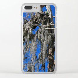 Shattered Secrets Clear iPhone Case