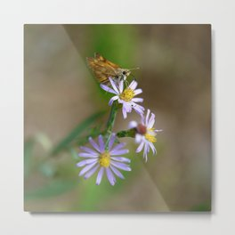 Skipper and Aster Metal Print