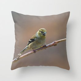 Early Spring Goldfinch Throw Pillow