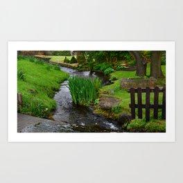 Garden river Art Print