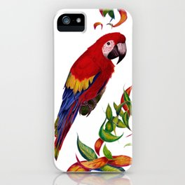 red parrot with rainbow leaves iPhone Case