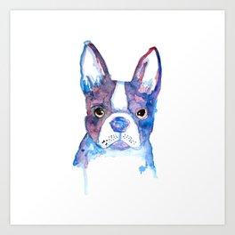bulldog frances Art Print