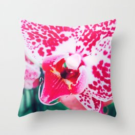 Close up Orchid 28 Throw Pillow