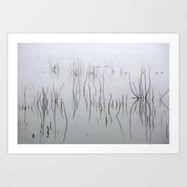 Zen time. Cormorants. Foggy sunrise at the lake. Art Print
