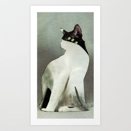 KatzenJammer 9 Art Print