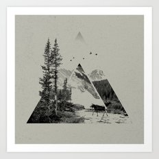 Natural Shapes Art Print