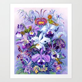 Orchids & Hummingbirds Art Print