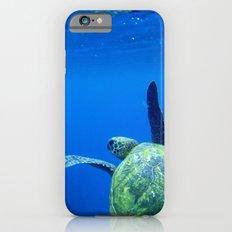 Turtle of the Sea iPhone 6s Slim Case