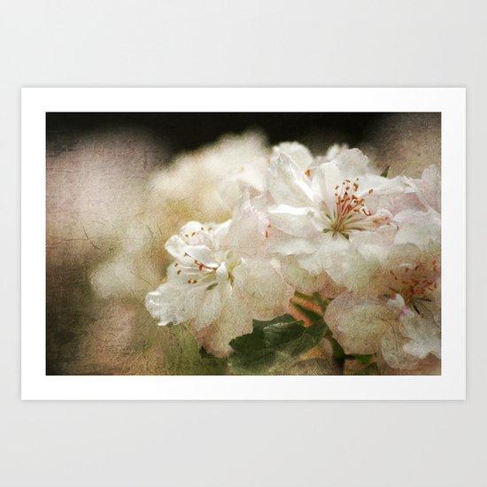 Blossom in Springtime 2 Art Print