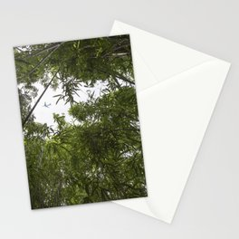 Flight 815 Stationery Cards