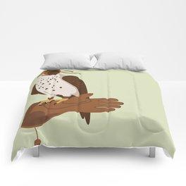 Mordecai Comforters