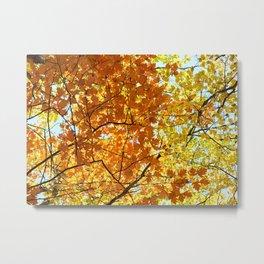 Majestic Autumn Metal Print