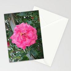 rosa rosa Stationery Cards