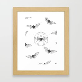 Cicada Framed Art Print