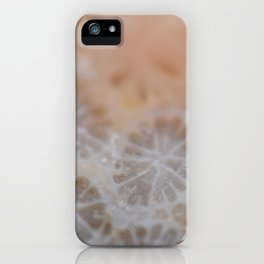 Agatized Coral iPhone Case