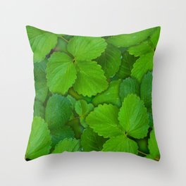 Holy Basil Tulsi Green Mint Leaves Throw Pillow