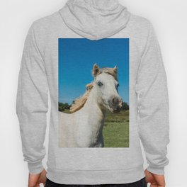 The Blue eyed horse Hoody