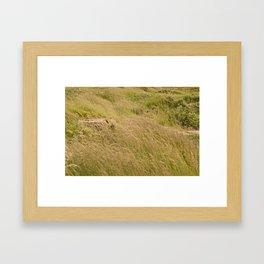 When all else moved on, I remain still... Framed Art Print