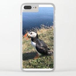 Puffin Clear iPhone Case