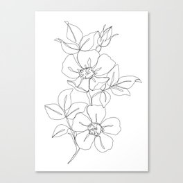 Floral one line drawing - Rose Canvas Print