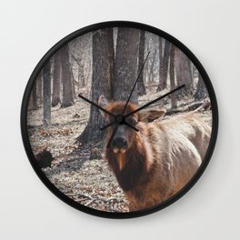 Lone Elk Wall Clock