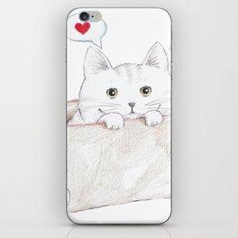 Cat Heart Box iPhone Skin