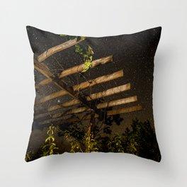 The Night Sky in Costa Rica Throw Pillow