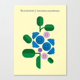 Fruit: Blueberry Canvas Print