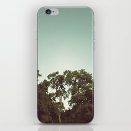 the trees iPhone Skin