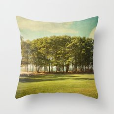 coming into fall landscape Throw Pillow