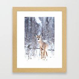 Deer In Snow Framed Art Print