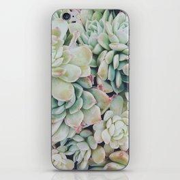 Primrose Green iPhone Skin