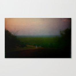 home /3 Canvas Print