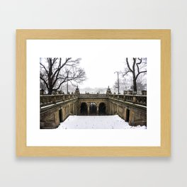 NYC Blizzard of 2015 in Central Park Framed Art Print