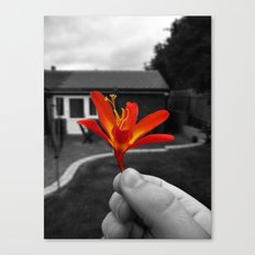 Held Flower Canvas Print
