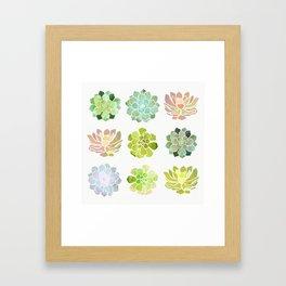 Spring Succulents Framed Art Print